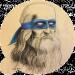 Аватар пользователя Ukropp