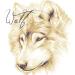 Аватар пользователя WoJlF