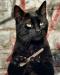Аватар пользователя klimko