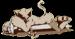 Аватар пользователя tenjou