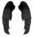 Аватар пользователя Angeellies
